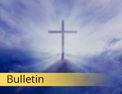 Bulletin -  Opens new window, and the bulletin may not be accessible.